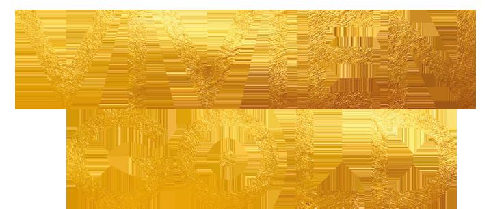 Logo Vivien Gold Schriftzug
