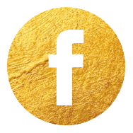 Facebook Icon Vivien Gold