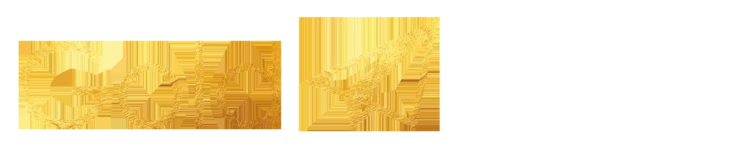 Logo Goldnews