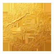 Tiktok Icon Vivien Gold